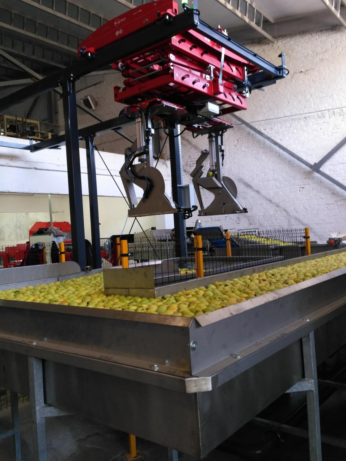 Конвейер с яблоками каргатский элеватор официальный сайт